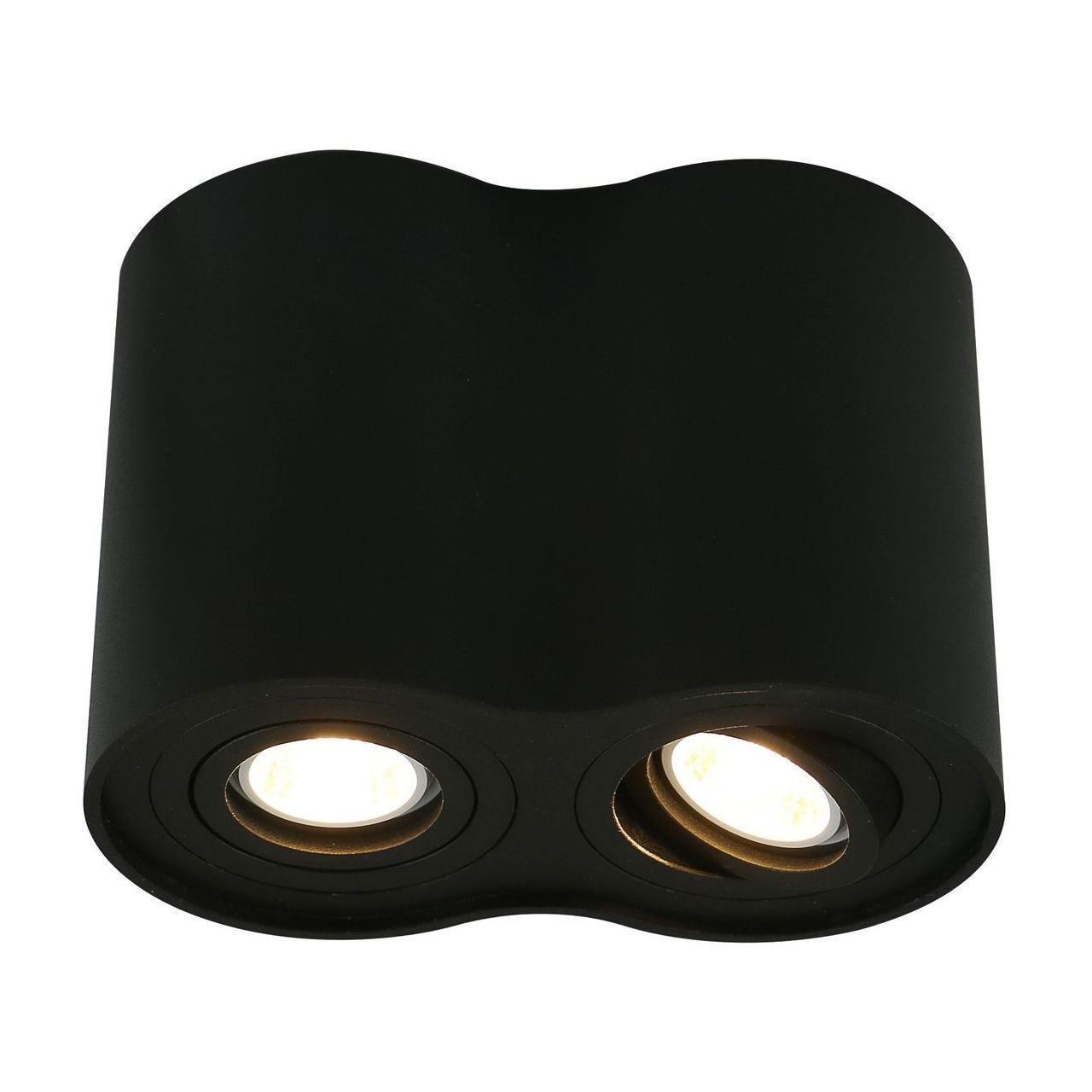 Потолочный светильник Arte Lamp A5644PL-2BK arte lamp бра arte lamp artefact a3225ap 2bk