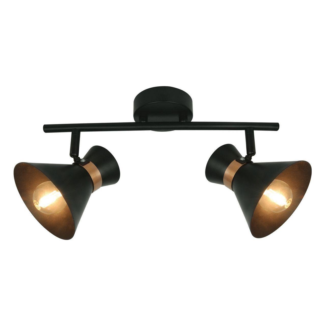 Спот Arte Lamp Baltimore A1406AP-2BK спот arte lamp a1406ap 2wg
