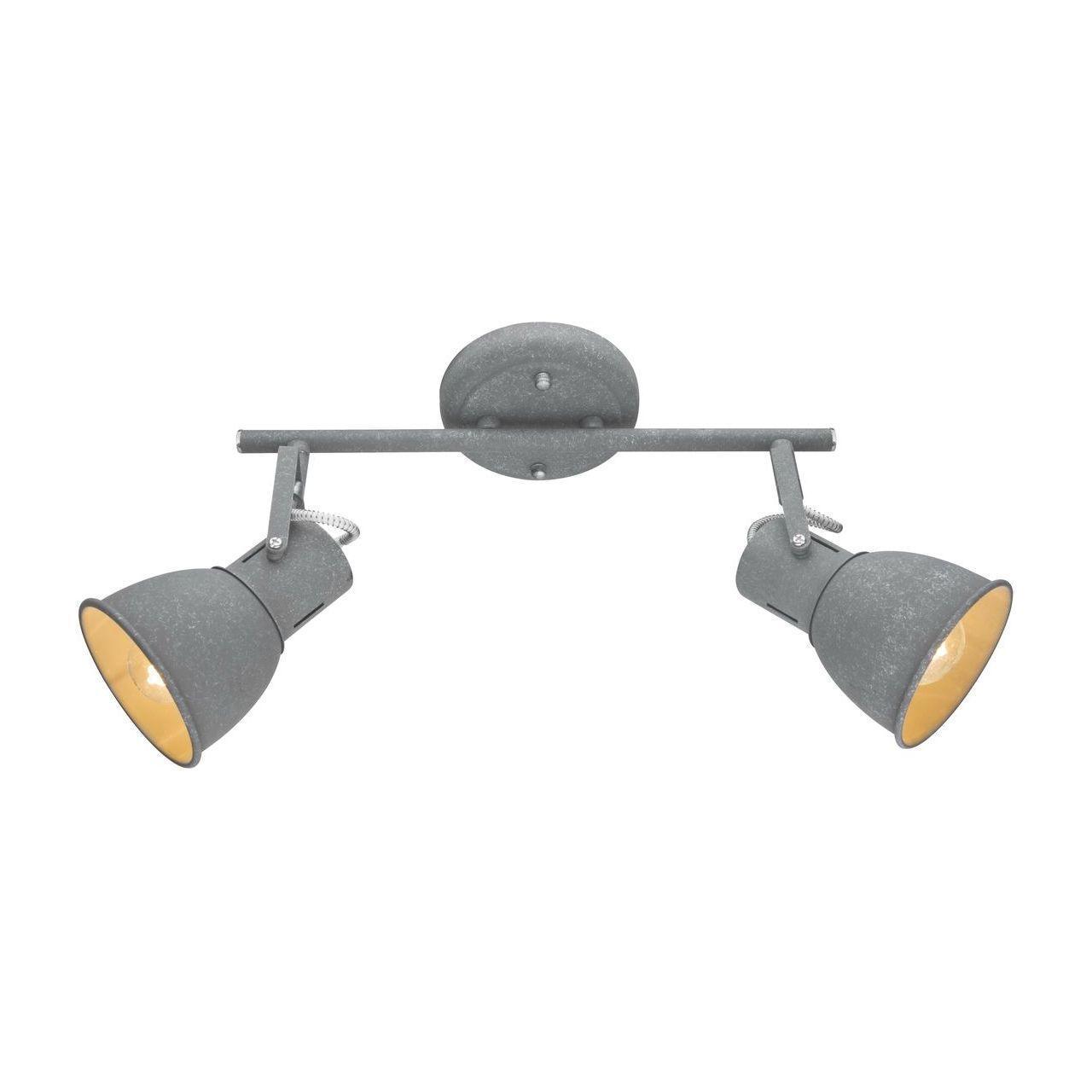 Спот Arte Lamp A1677PL-2GY