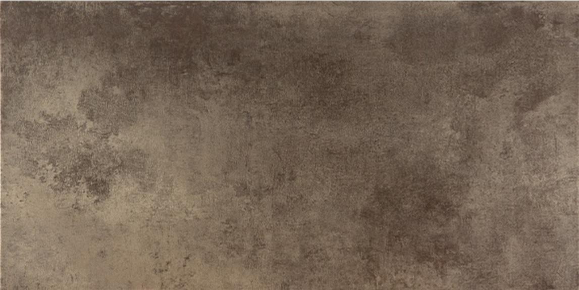 Универсальная плитка Ceracasa Evolution Titanio 49,1x98,2 leran titanio pf724 i 24 см
