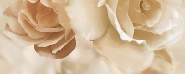 Dec Rosario Panno B 20х50 бордюр ceradim rosario mold 5x50