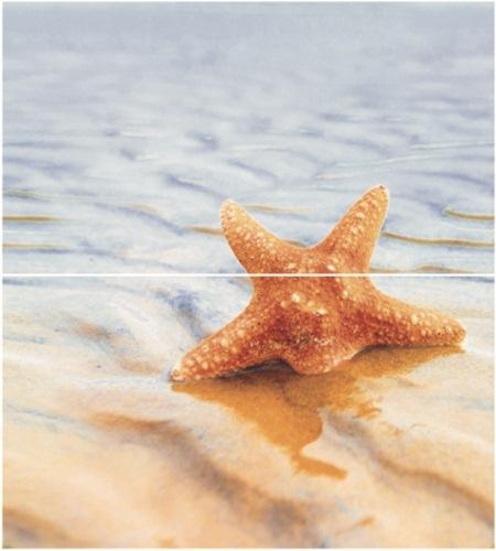 Starfish 1 (панно из 2-х шт) 50х45 starfish