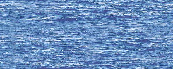 Dec Lago Panno A 20х50 dec santo panno a 20х50