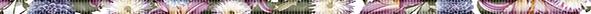 Mold Fantasy Бордюр 1,2х50 бордюр ceradim pattern abstraction nene 2x50