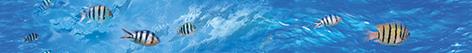 Ocean Deep Бордюр B400D302 40х4,5 150g 200g 250g je lead metal sinker jigging lure slow pitch sinking jig deep sea artificial fishing bait saltwater ocean angling