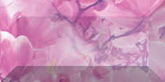 Фото - Magnolia Бордюр рельефный br1020D297-1 20х10 бордюр ceramica classic tile magnolia 4 5x40