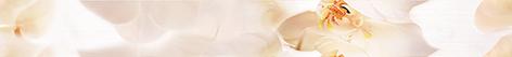 Фото - Damasc Бордюр B400D294 40х4,5 бордюр ceramica classic tile magnolia 4 5x40