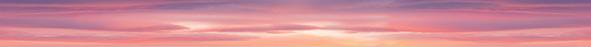 Pink flamingo Бордюр 50x4 бордюр keros ceramica varna cen roses 5х50