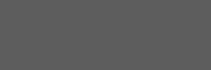 Manhattan облицовочная плитка серая (C-MAS091) 20x60 pentax sp 20x60 wp