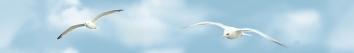 Mauritius Бордюр B300-2D138 30х4,5 pastel бордюр b300 2d124 30х4 5