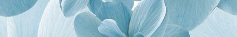 Pastel Бордюр B300-2D124 30х4,5 бордюр муза керамика orbit 4 5x30