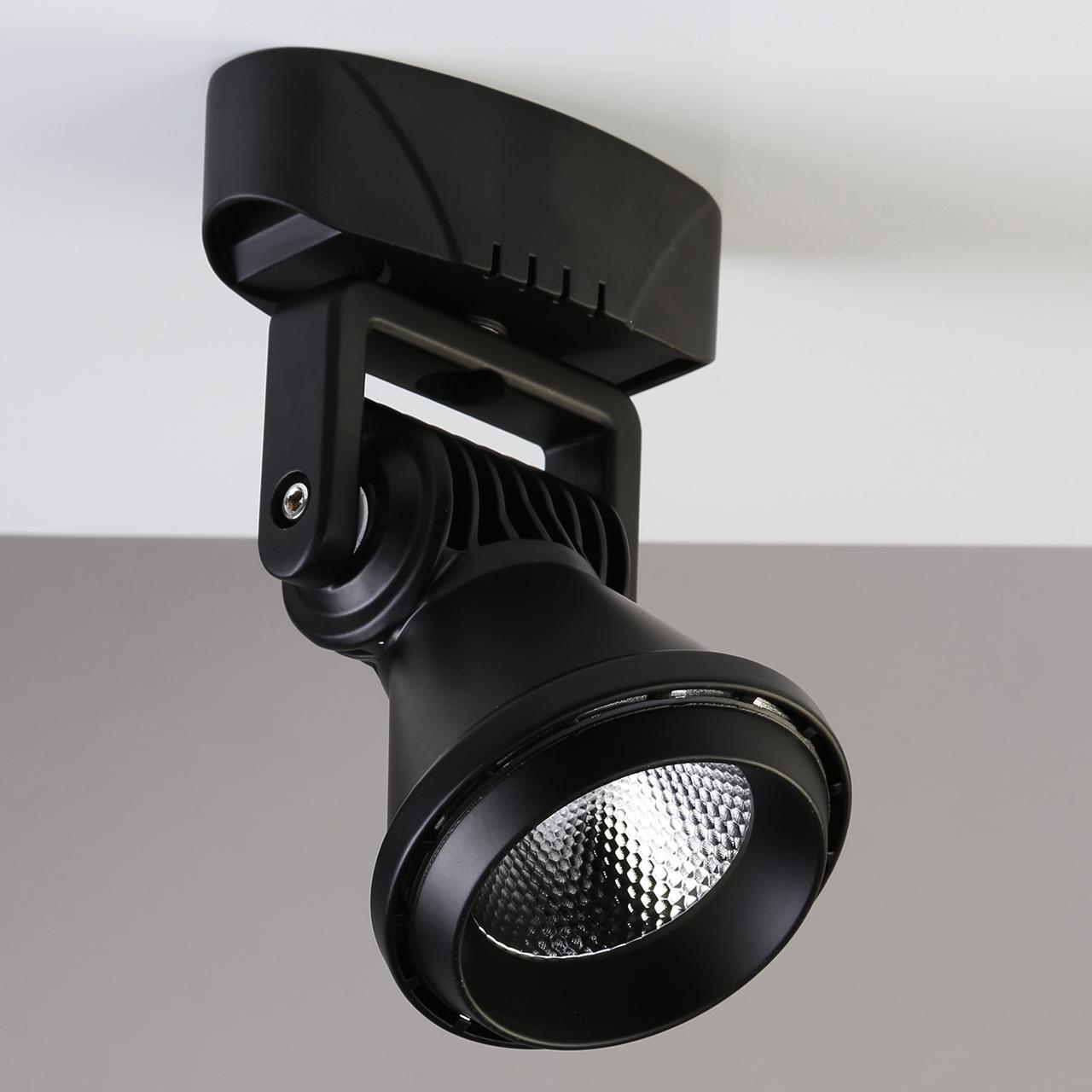 Светодиодный спот Favourite Projector 1766-1U favourite спот favourite lustige 1725 1u