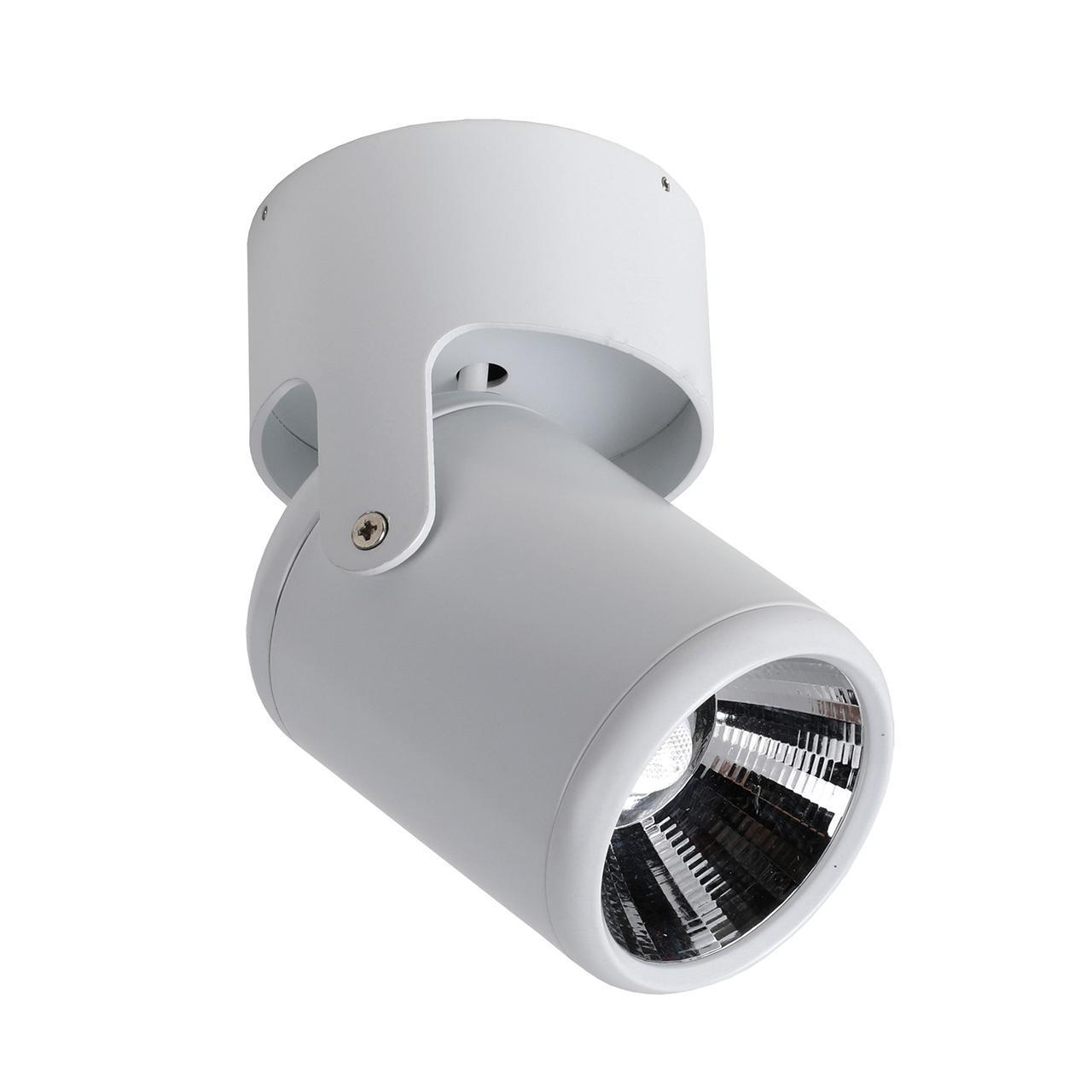 Светодиодный спот Favourite Projector 1980-1U светодиодный спот favourite projector 1771 1u