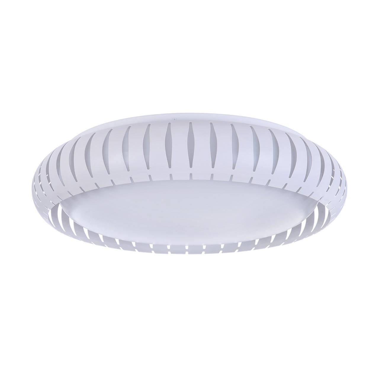 Потолочный светодиодный светильник Freya Assanta FR6159-CL-24W-W