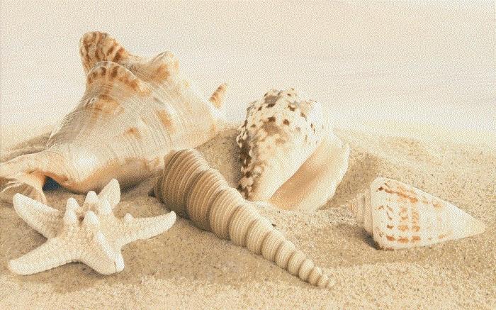 Amalfi sand decor 01 250х400 мм - 13 шт. панно ape ceramica adorable decor set 2 romeo sand 40x60 комплект