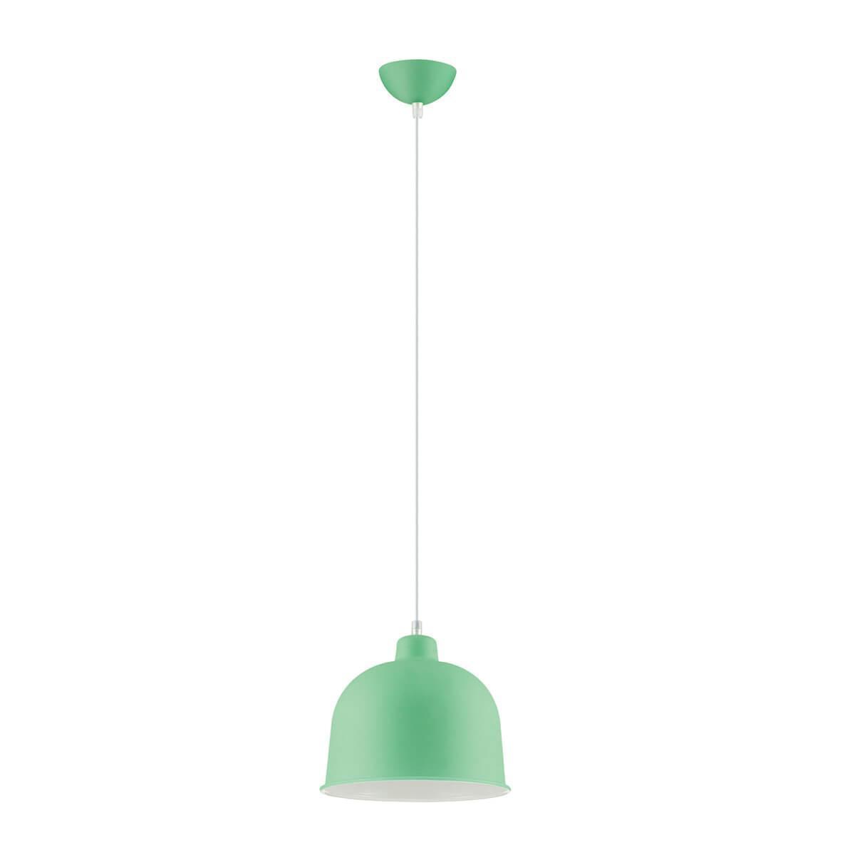 Подвесной светильник Lumion Rory 3657/1 подвесной светильник lumion rory 3656 1