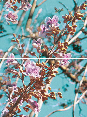 Spring P2D261 Панно из 2-х плиток 30х40 панно настенное 30х40 spa из 2 плиток зеленый