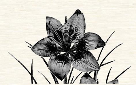 Piano черн./09-03-04-081-1/ /96-46-04-8101/ Декор 40х25 декор нефрит риф бретань 3 60x20