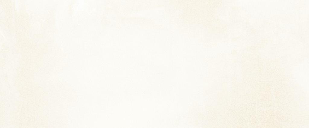 Универсальная плитка Novogres Aitana Blanco 25х60 недорго, оригинальная цена