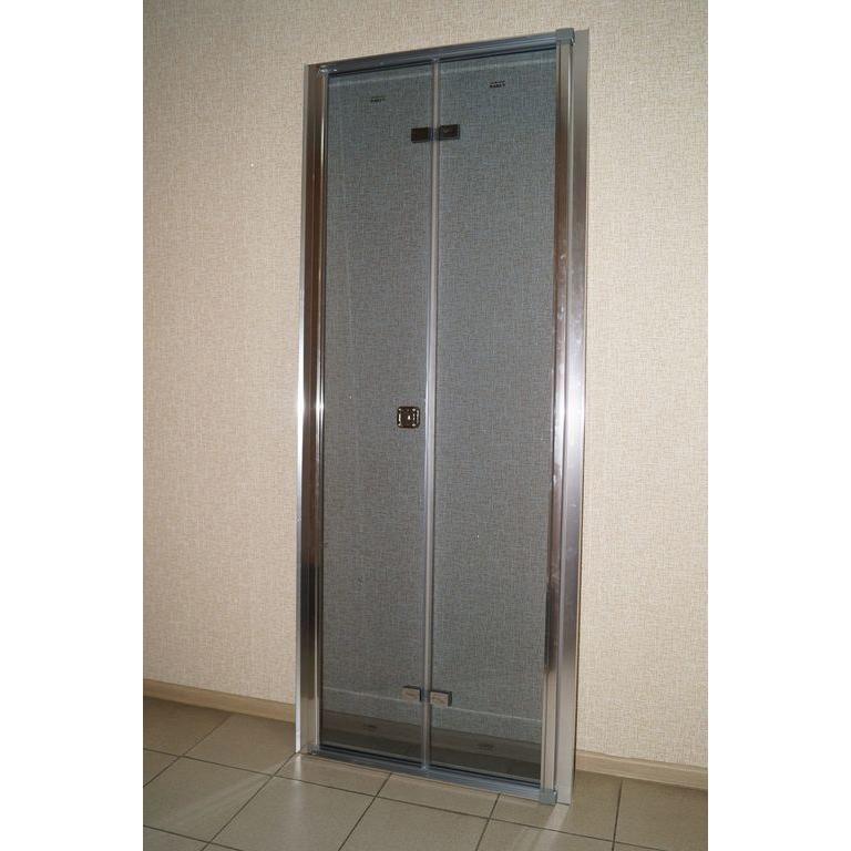 Душевая дверь Parly D81 дверь