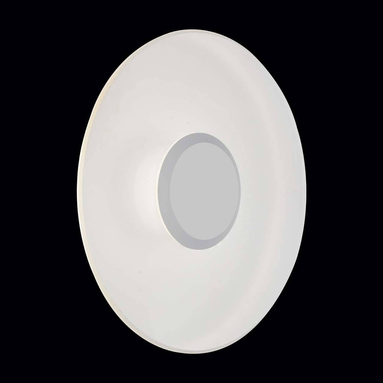 Уличный настенный светодиодный светильник ST Luce SL925.501.01